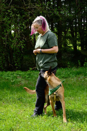 Dog trainer demonstrates exercises outdoors with therapy dog
