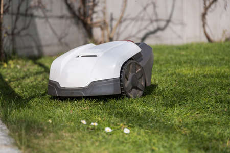 automatic lawnmower provides for short grass clippings - Close-up robotic lawnmower Stock fotó