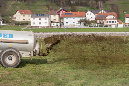Farmer discharges manure on meadow - close up. Agriculture