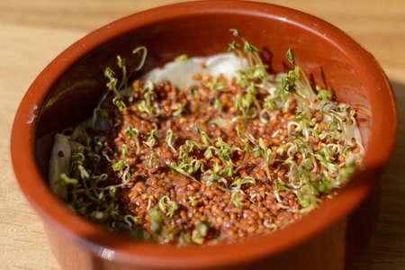 Kressesprossen und Sprossen in einer Schüssel - Gartenkresse selber gewachsen