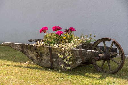 Upcycling historic wooden wheelbarrow to planted garden decoration - wheelbarrow