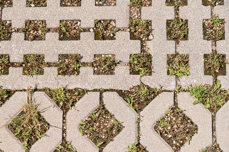 Lattice stones with fillable hollow space as parking area - grass stone stones Banco de Imagens