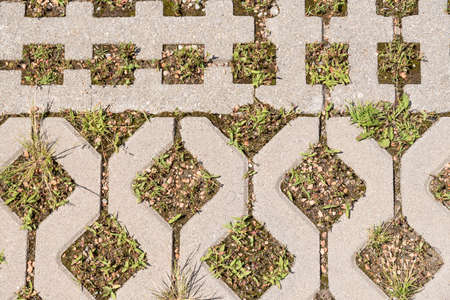 Parking area by paving with lattice stones - lawn grating, background