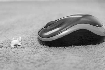 Model of a mouse and a computer mouse - black and white photo, isolated Standard-Bild