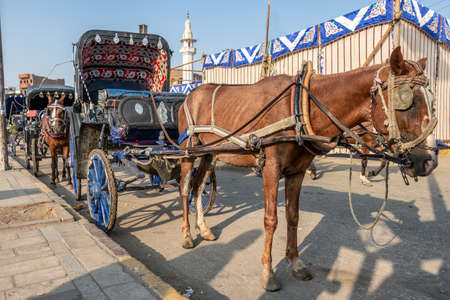 A horse carriage wait for customers next to the River Nile in Edfu. Horse carriages are the commonly used for tourist transportation from cruises to Edfu Temple