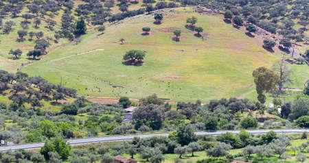 Springtime landscape in the Sierra de Huelva. Sierra de Aracena and Picos de Aroche Natural Park, Andalusia, Spain