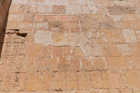 Hieroglyphs on a wall in the Valley of Kings in Luxor, Egypt