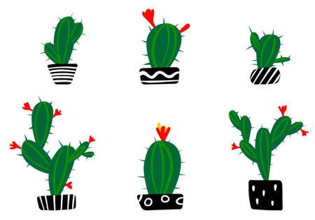 Cactus hand drawn on white background dodle style Illusztráció