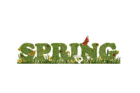 Beautiful spring background Stock Photo - 12995478
