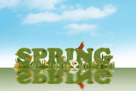 Beautiful spring background photo