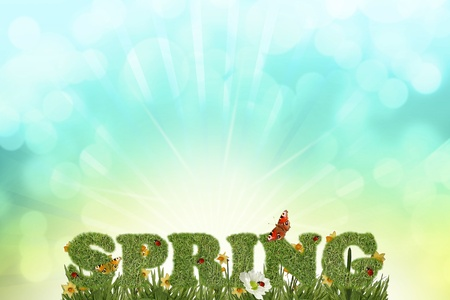 Beautiful spring background photo