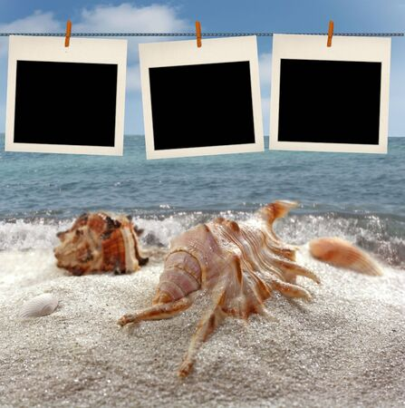 Summer beach background with photo frame  photo