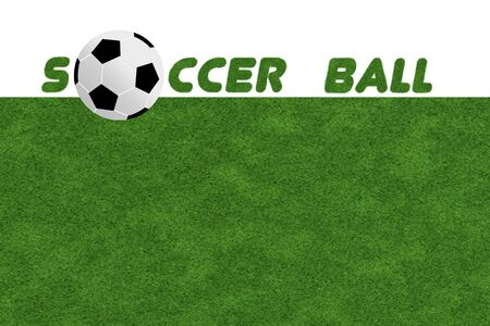 background of  Soccer ball on the green field  photo