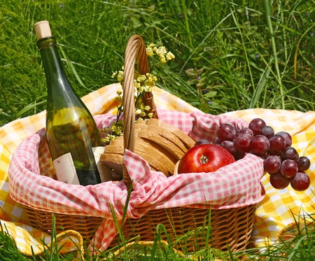 picnic on the grass Stock Photo - 13385041
