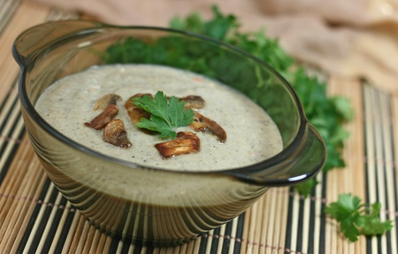 mushroom soup with cream  Stock Photo - 13446636