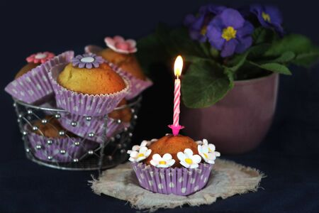 Delicious cupcakes with candle and flowers decoration Stock Photo - 17567768