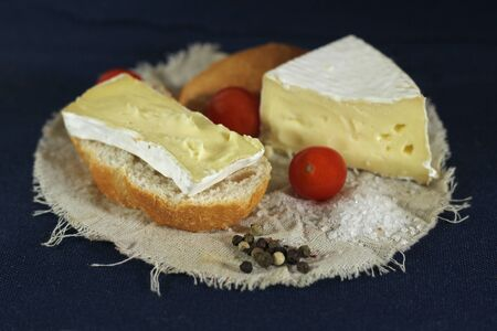 Arrangement with piece of bread , tomatoes and white cheese on    blue background Stock Photo - 17567772