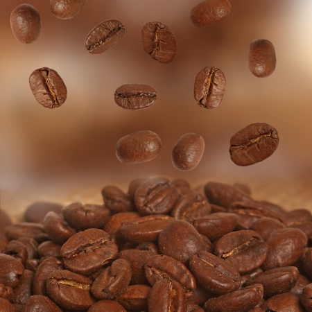Closeup of coffee beans photo