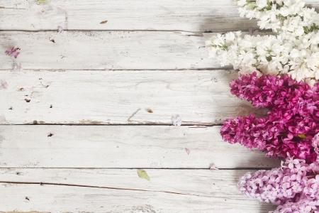 flores moradas: fondo de madera con flores lilas Foto de archivo
