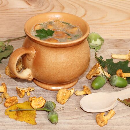 Fresh out of the woods mushroom soup Stock Photo - 21383185