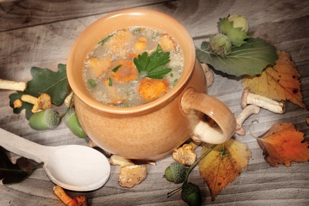 Fresh out of the woods mushroom soup Stock Photo - 21383180