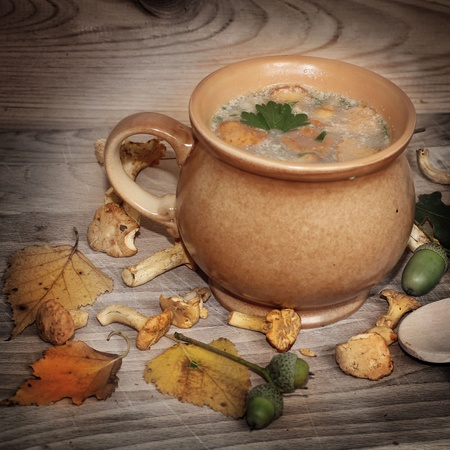 Fresh out of the woods mushroom soup Stock Photo - 21383188