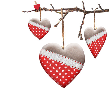 valentin: Valentine heart hanging on a tree branch