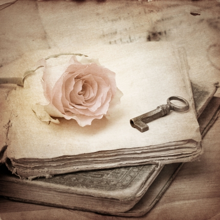 pink rose on an old book  vintage