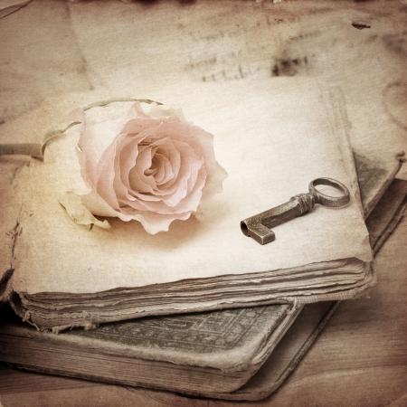 pink rose on an old book  vintage
