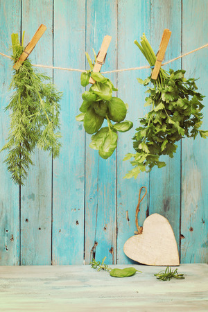 wild herbs: Assorted hanging Herbs on an old and vintage wooden blue