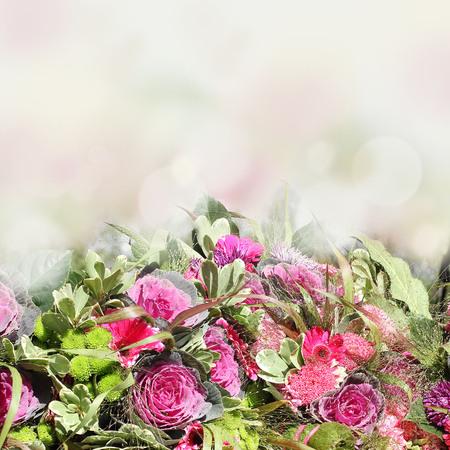 goodly: Autumn flowers