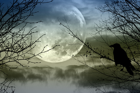 Halloween background with  spooky forest and full moon