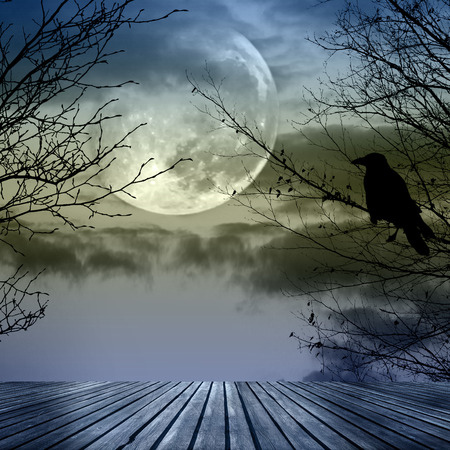 Halloween background with  spooky forest and full moon photo