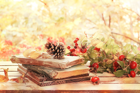 late summer: old books, leaves and cone  in autumn scenery