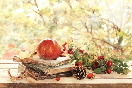 late summer: old books, leaves and apple in autumn scenery Stock Photo