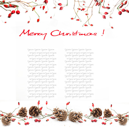 Winter background with red berries photo