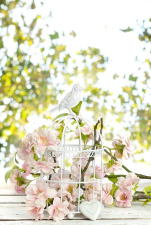 spring flowers in  birdcage photo
