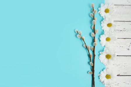 pussy yellow: spring flowers and pussy willow twigs on wood background Stock Photo