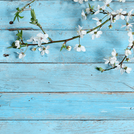 flowers on wooden background 版權商用圖片 - 39243423
