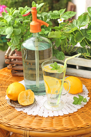citruses: Homemade lemonade with fresh citruses