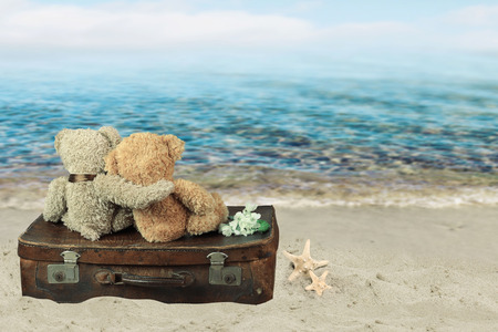 teddybear: Two in love teddy bears sit on a suitcase. holiday concept Stock Photo