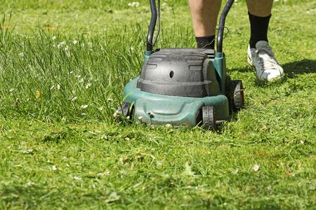 mowing grass: Man mowing grass with grass-mower