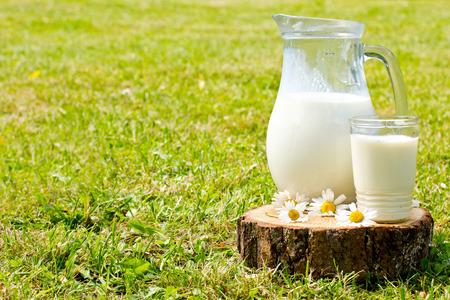 우유 용기와 카모마일과 함께 풀밭에 유리