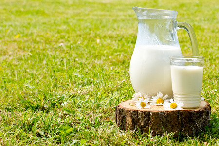 Milk jug and glass on the grass with chamomiles