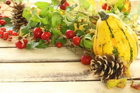ash gourd: autumn decoration