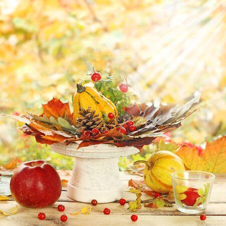 ash berry: autumn decoration