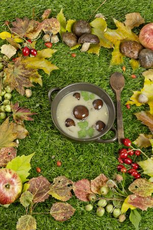 food staple: wild mushroom soup and part of forest Stock Photo