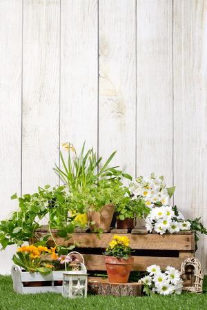 home and garden: spring garden
