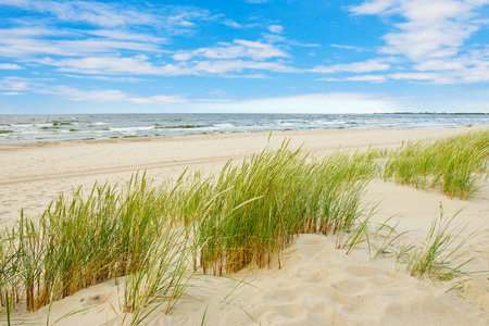 Grass sand dune beach sea view, Sobieszewo Baltic Sea, Poland