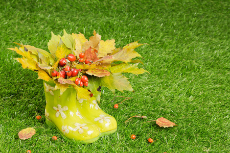 wellingtons: Beautiful bunch of autumn  in rubber boots on the grass